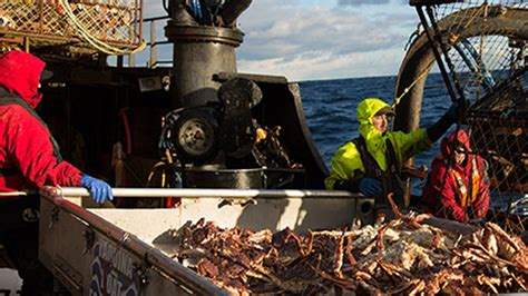 deadliest catch season 11 returns on discovery pop tower deadliest catch is back for an iconic 11th season