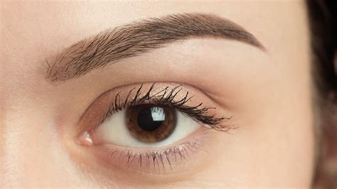Eyebrows Treatment Paket 2 specialists in hair loss treatment harley hair clinic