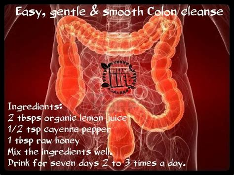 Colon Detox Drink by Best 25 Colon Cleanse Drinks Ideas On Colon