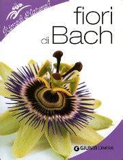 fiori di bach per stress i fiori di bach 38 rimedi naturali per il benessere