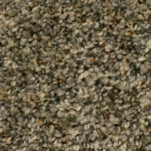 shop stainmaster petprotect lexington first launch textured interior carpet at lowes com