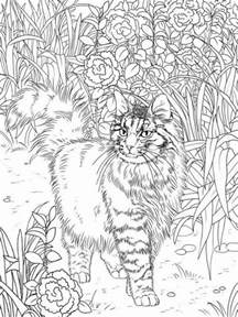 cat coloring pages for adults best coloring books for cat coloring coloring