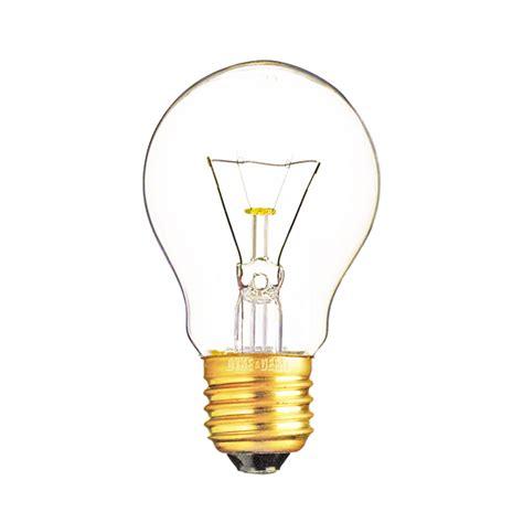 bulbs dean