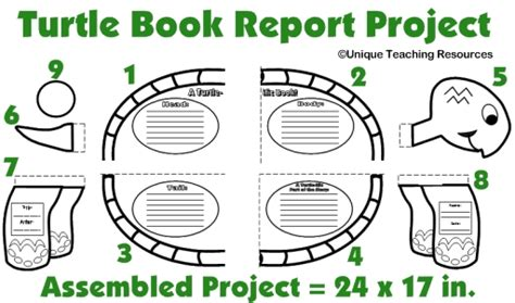 my book report project template turtle book report project templates printable