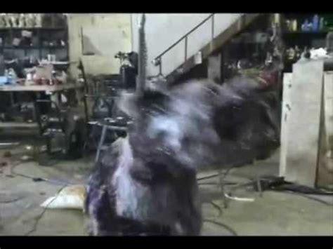 haunted dog house halloween haunted house animatronics props how to make do everything