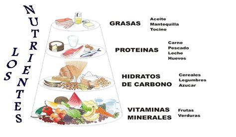 proteinas y grasas hidratos de carbono prote 237 nas y grasas pontemamado