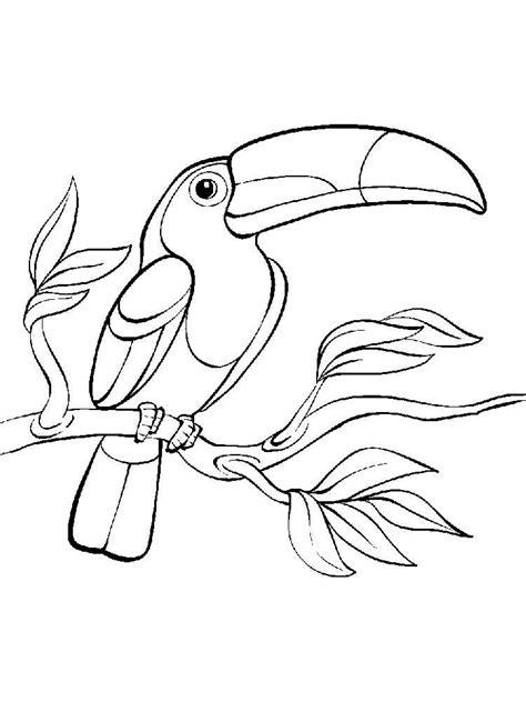 Desenhos de Tucanos Para Imprimir e Colorir - Animais Para