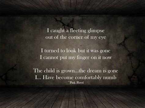 Pink Flyod Comfortably Numb by Pink Floyd Comfortably Numb Lyrics