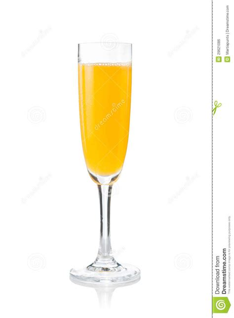 mimosa clipart mimosa prepared in the traditional way stock