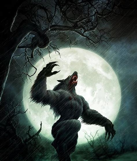 werewolf cave tutorial 23 best cool fictional creatures images on pinterest
