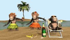 new year monkey animated gif monkeys 2016 gifs search find make gfycat
