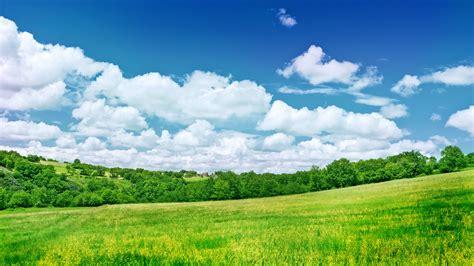 fondo pantalla prado naturaleza verdes cos full hd fondo de pantalla and fondo de
