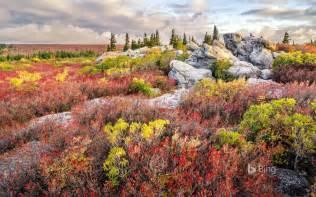 West Virginia bear rocks preserve in the dolly sods wilderness west