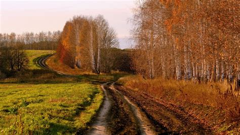 country in country backroad wallpaper wallpaper