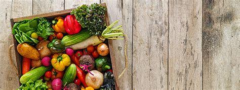 master alimentazione vegetariana il master in alimentazione e dietetica vegetariana funiber