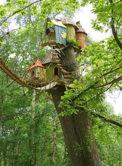amazing tree houses via my fotolog architecture tree house pinterest