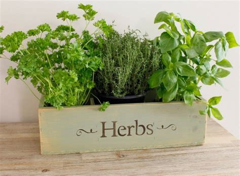 Herb Box Planter by Herb Planter Window Box Wooden Window Box Planter Wooden