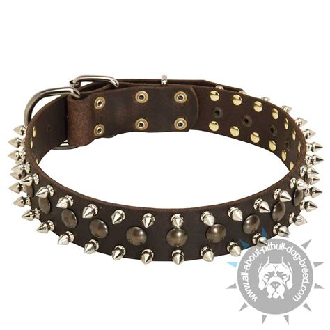 spiked collars for pitbulls pitbull harness pitbull accessories breeds picture