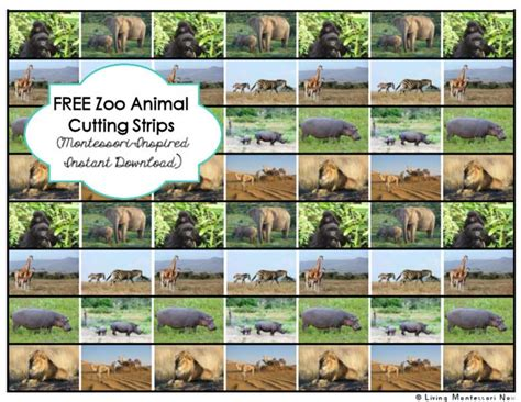 printable montessori cutting strips simple african animal and continent map cut and paste