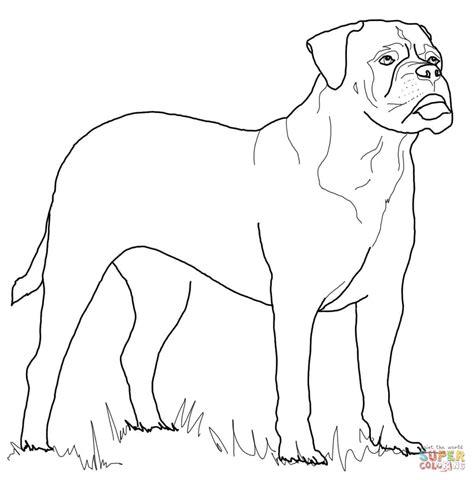 coloring pictures rottweiler dogs ausmalbild bullmastiff ausmalbilder kostenlos zum
