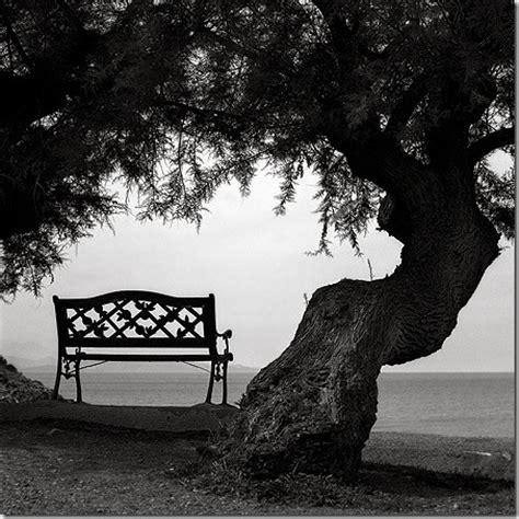 imagenes de amor triste en blanco y negro deja libre a mi coraz 243 n
