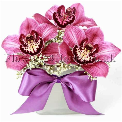 orchid delivery uk flowers delivery company flowers24hours arranges this
