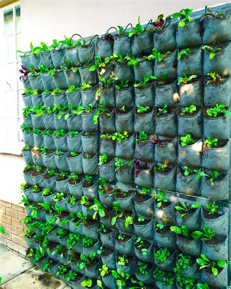 vertical veggie garden urbanic