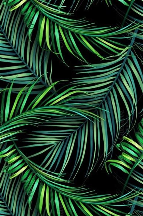 wallpaper tropical green leaves discovered by ali on we heart it