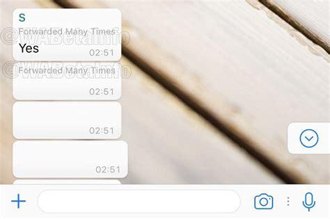 cadena ser whatsapp whatsapp quiere terminar con el spam y los mensajes en cadena