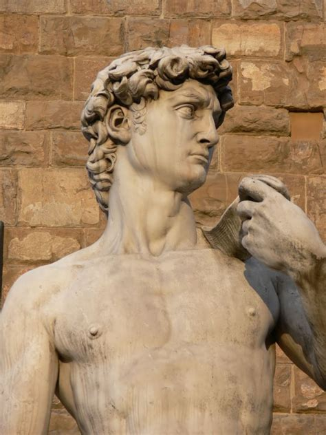 michelangelo david sculpture medici art adavis15brophy