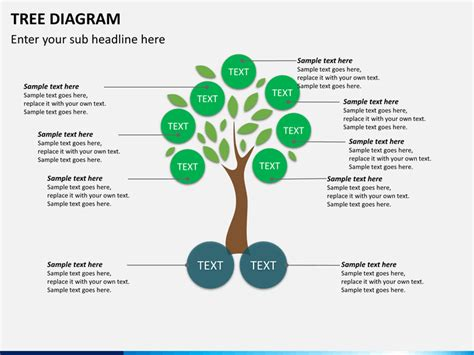 Powerpoint Tree Diagram Sketchbubble Tree Diagrams Ppt