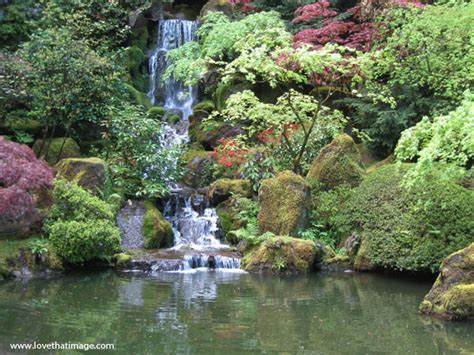 Ponds And Waterfalls For The Backyard Japanese Garden Waterfall In Springtime Love That Image