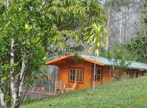 Mount Warning Cabins mt warning bed and breakfast retreat accommodation gold coast