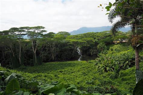 kauai island trip guide itinerary to hawaii island