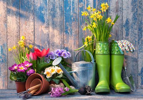 cheap gardening ideas 7 cheap gardening ideas and tips