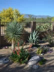 Pots For Patios Landscaping Awards Tucson Az Sonoran Gardens Inc