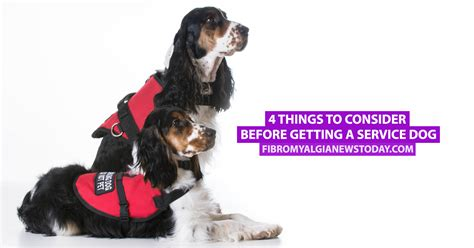 getting a service 4 things to consider before getting a service fibromyalgia news today