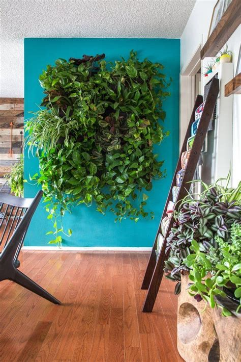 apartment plants ideas best 25 plant wall ideas on pinterest plant wall decor