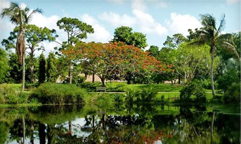 Mount Botanical Gardens Half Garden Membership In West Palm Mounts