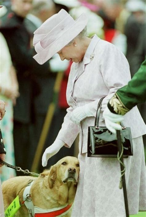 queen elizabeth s dog the 25 best queen elizabeth ideas on pinterest elizabeth ii queen elizabeth ii and queen