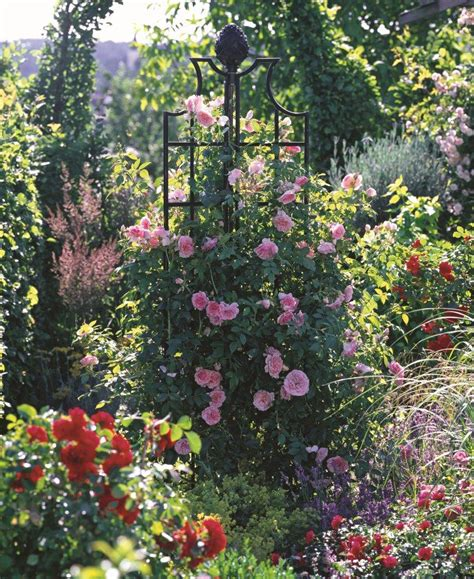 ideas for climbing rose supports classic garden obelisk classic garden elements