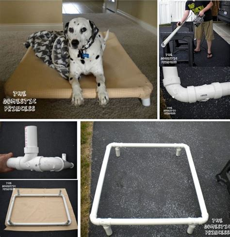 raised dog bed diy pvc pipe raised dog bed steps with pictures dog beds and