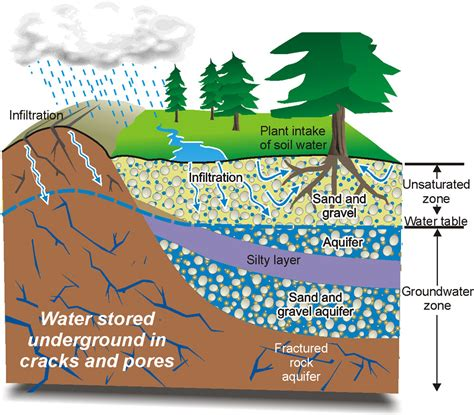groundwater diagram water infiltration diagram water free engine image for