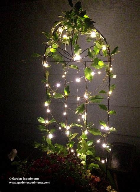 adding   magic   garden  fairy lights