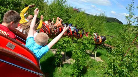 theme park synonym list of synonyms and antonyms of the word twinlakes
