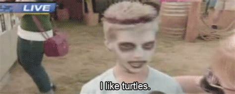 I Like Turtles Meme - i like turtles know your meme