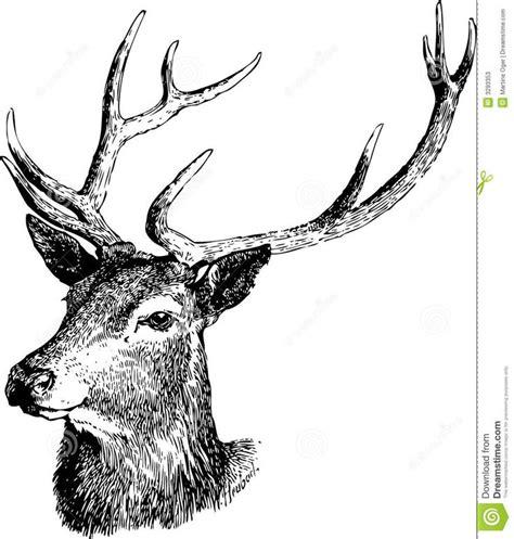 imagenes de venados a blanco y negro 25 mejores im 225 genes sobre tattoo ciervo en pinterest