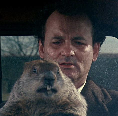 groundhog day phil connors new stage musical version of bill murray groundhog