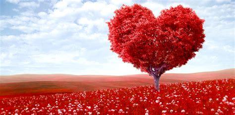 imagenes bonitas de paisajes de amor paisajes de amor eterno imagenes hermosas fotos enamorados