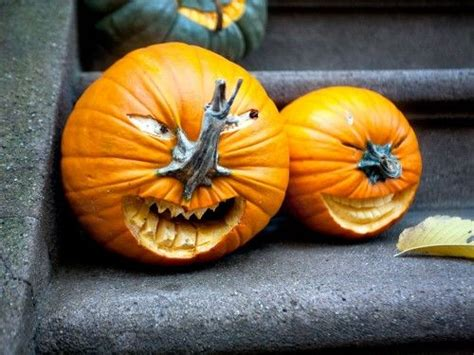 google images of pumpkins google image result for http smithratliff com wp content
